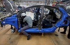 Ngành ôtô Ấn Độ kêu gọi chính phủ có các giải pháp hỗ trợ