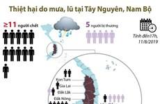 [Infographics] Thiệt hại do mưa, lũ tại Tây Nguyên và Nam Bộ