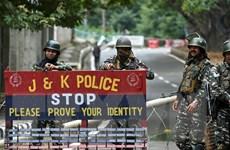 Ấn Độ bắt đầu nới lỏng lệnh giới nghiêm tại khu vực Kashmir