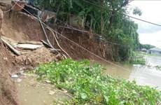 An Giang: Công bố tình huống khẩn cấp sạt lở bờ Sông Hậu