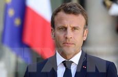Pháp: Căng thẳng thương mại khiến tất cả các bên chịu tổn thất