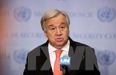 Tổng Thư ký LHQ kêu gọi các lãnh đạo G7 cam kết chống biến đổi khí hậu