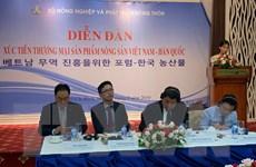 Thúc đẩy xuất khẩu nông sản Việt sang thị trường Hàn Quốc