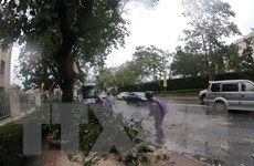 Mưa lũ gây ngập lụt nhiều nơi ở Lâm Đồng, 1 người bị lũ cuốn mất tích