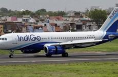 Hàng không Ấn Độ mở 2 đường bay thẳng đến Việt Nam trong tháng 10 tới