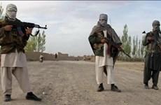 Afghanistan: Lực lượng phiến quân Taliban bắt cóc nhiều nhà báo
