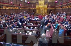Các nghị sỹ Anh sẵn sàng yêu cầu tòa án buộc thủ tướng trì hoãn Brexit