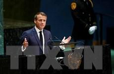 Pháp cắt giảm thuế nhằm xoa dịu phong trào biểu tình Áo vàng