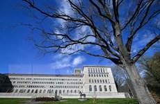 WTO hạ dự báo tăng trưởng thương mại hàng hóa toàn cầu năm 2019