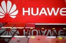 Nikkei: Các công ty Nhật Bản duy trì mối quan hệ làm ăn với Huawei