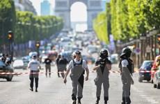 Cảnh sát Pháp bắt giữ đối tượng dọa phá hủy một bảo tàng