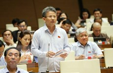 Lựa chọn nhà đầu tư đáp ứng yêu cầu cho dự án sân bay Long Thành