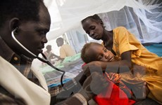 Bước tiến lớn trong điều chế loại vắcxin mới phòng ngừa bệnh lao