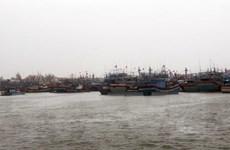 Bình Định sẵn sàng sơ tán 14.500 hộ dân ứng phó với bão số 5