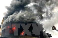 TP.Hồ Chí Minh: Nỗ lực khống chế đám cháy lớn tại kho nệm mút