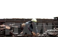 Bão số 5 gây nhiều thiệt hại tại tỉnh Quãng Ngãi, 4 người bị thương