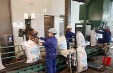 Bộ Công Thương tiếp nhận hồ sơ đấu giá hạn ngạch thuế nhập khẩu đường