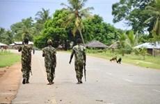 Mozambique: 10 người thiệt mạng vụ tấn công của phần tử thánh chiến