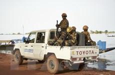 Mali: 53 binh sỹ thiệt mạng trong vụ tấn công vào doanh trại quân đội