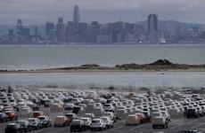 """Bộ Thương mại Mỹ """"hy vọng"""" không cần áp thuế bổ sung với ôtô nhập khẩu"""