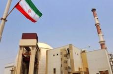 Mỹ phạt tù một thương nhân xuất khẩu sợi carbon sang Iran