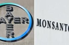 Công ty Monsanto nhận tội sử dụng thuốc trừ sâu trái phép tại Mỹ