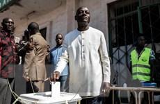 Các cử trị tại Guinea-Bissau đi bỏ phiếu bầu tổng thống