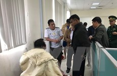 Cứu thành công 18 thuyền viên tàu nước ngoài gặp nạn ở biển Sơn Dương