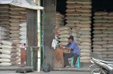 Indonesia đặt mục tiêu xuất khẩu lên đến 500.000 tấn gạo trong năm tới