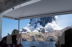 Núi lửa ở New Zealand: Không có dấu hiệu còn sự sống trên Đảo Trắng