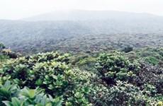 """Khám phá Vườn Quốc gia Kon Ka Kinh - """"Nóc nhà của Gia Lai"""""""