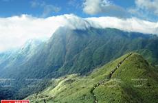 VQG Hoàng Liên Sơn - trung tâm đa dạng sinh học bậc nhất Việt Nam