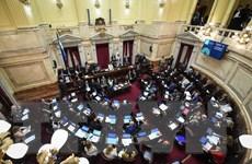 Thượng viện Argentina thông qua gói biện pháp kinh tế khẩn cấp