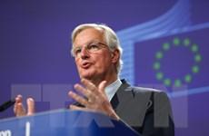 Các ưu tiên của EU trong đàm phán thương mại với Anh