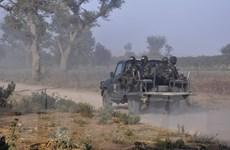 Cameroon: Boko Haram bắt cóc 17 ngư dân tại khu vực hồ Chad