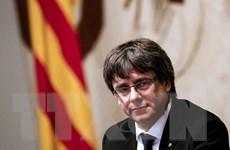 Bỉ ngừng xem xét yêu cầu dẫn độ với các cựu lãnh đạo vùng Catalonia