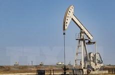 Giá dầu tăng trong phiên giao dịch đầu tiên của năm 2020