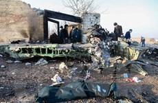 Tìm thấy hộp đen của máy bay 737 bị rơi ở ngoại ô thủ đô Tehran