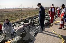 Căng thẳng Mỹ-Iran: Thái Lan, Hà Lan khuyến cáo an toàn của công dân