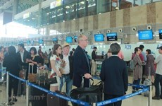 Cảng hàng không quốc tế Tân Sơn Nhất sẽ tăng số chuyến bay dịp Tết