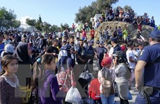 Hy Lạp thành lập bộ chuyên trách chính sách di cư
