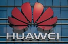 Đức không cấm Huawei tham gia đấu thầu xây dựng mạng 5G