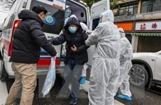 Tây Ban Nha xác nhận trường hợp nhiễm đầu tiên do nhiễm virus corona