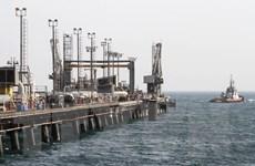 OPEC+ cân nhắc cắt giảm sản lượng dầu thêm 500.000 thùng mỗi ngày