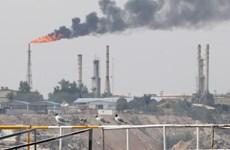 Giá dầu Brent rơi xuống mức thấp nhất trong hơn một năm