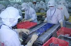 Hoa Kỳ điều tra hành vi lẩn tránh thuế sản phẩm tôm xuất khẩu