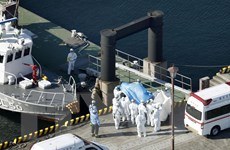 Nhật xác nhận thêm 65 ca nhiễm virus trên tàu Diamond Princess