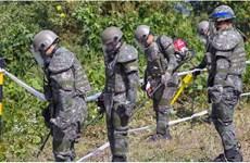 LHQ ủng hộ kế hoạch rà phá bom mìn tại DMZ trên bán đảo Triều Tiên
