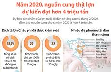 [Infographics] Nguồn cung thịt lợn dự kiến đạt hơn 4 triệu tấn