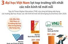Việt Nam có 3 đại học lọt top trường tốt nhất các nền kinh tế mới nổi